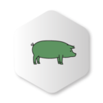 Green Pig Icon