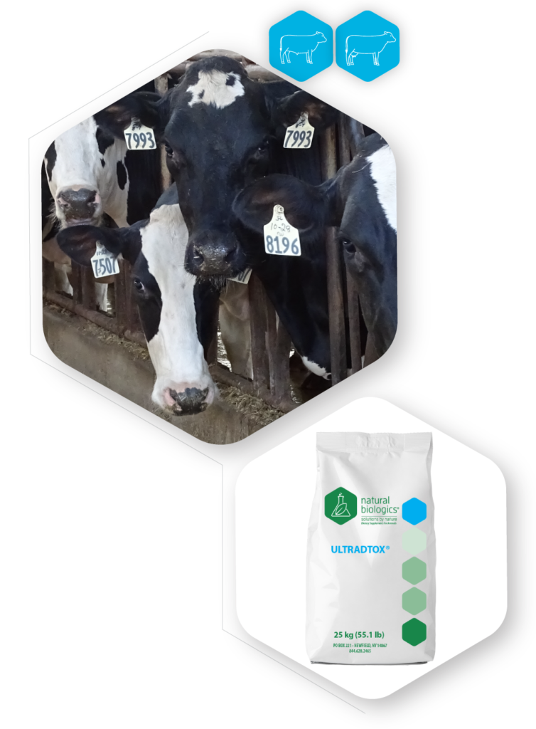 Ultradtox Icons of cow and bag